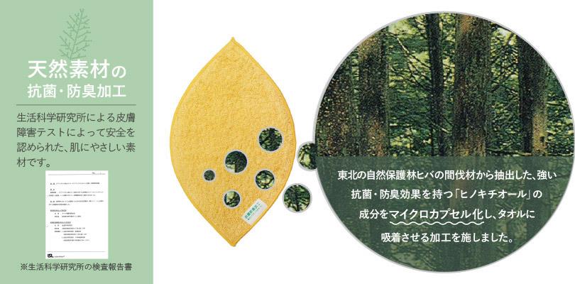 hashibori2_2.jpg